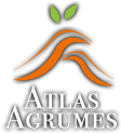 ATLAS AGRUMES - Flavoured by nature